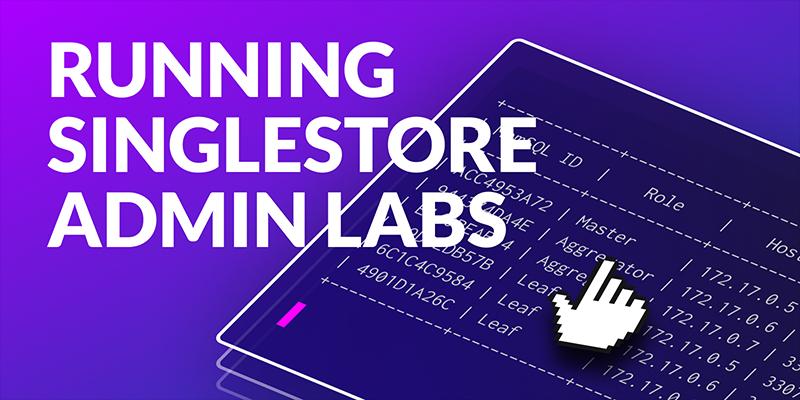 Running Administrator Labs in Docker