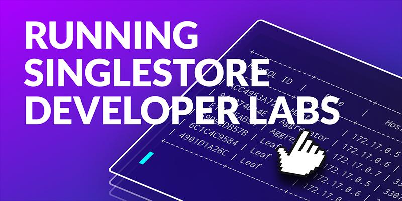 Running Developer Labs in Docker